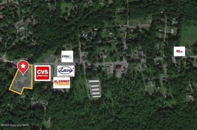 Cresco Commercial For Sale: Weibolt Rd. & Rt 390