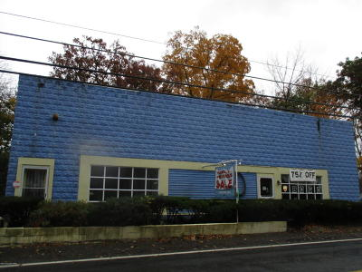 Cresco Commercial For Sale: 6606 Route 191/390