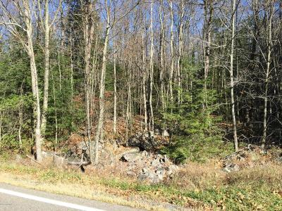 Residential Lots & Land For Sale: Stony Mountain Rd