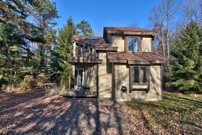 Pocono Pines Single Family Home For Sale: 155 Long View Lane