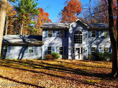 Kunkletown Single Family Home For Sale: 155 Lower Vly