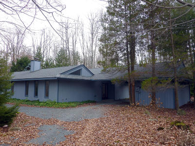 Pocono Pines Single Family Home For Sale: 5176 Pioneer Trl
