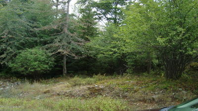 Long Pond Residential Lots & Land For Sale: 38 Minsi Trl