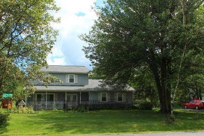 Blakeslee Single Family Home For Sale: 169 Ryan Rd