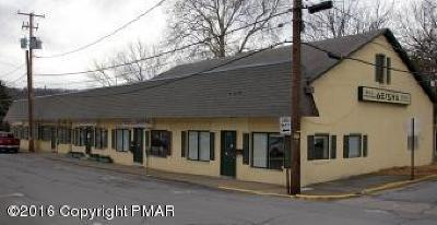 Stroudsburg Commercial For Sale: 19 Williams St
