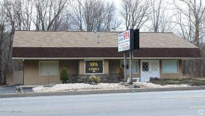Monroe County Commercial For Sale: 3305 Route 611