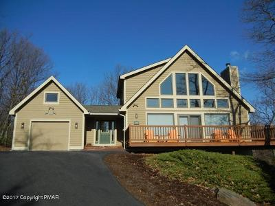 Tannersville Single Family Home For Sale: 434 Poplar Ct