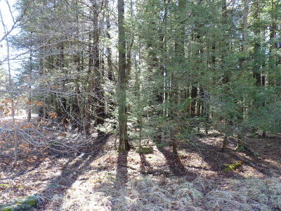 Blakeslee Residential Lots & Land For Sale: LOT 167 King Arthur Road