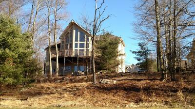 Lake Harmony Single Family Home For Sale: 91 Wolf Hollow