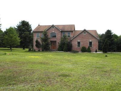 Jim Thorpe Single Family Home For Sale: 34 Leslie Lane