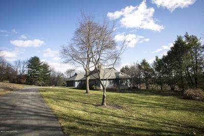 Stroudsburg Single Family Home For Sale: 354 Kathleen Dr