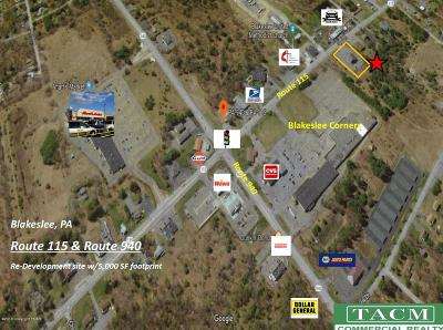 Blakeslee Commercial For Sale: 5716 Route 115