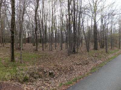 Blakeslee Residential Lots & Land For Sale: 352 Brier Crest Rd