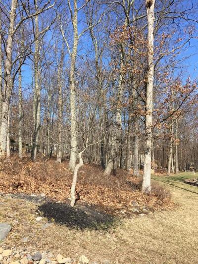 East Stroudsburg Residential Lots & Land For Sale: 118 O Donovan Dr