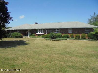 Kunkletown Single Family Home For Sale: 105 Alpine Dr