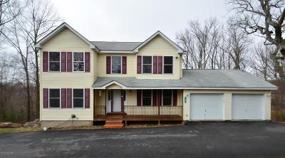 Tannersville Single Family Home For Sale: 153 Tanbark Ln