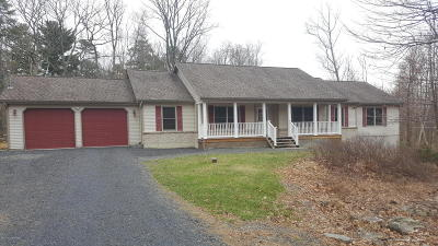 Canadensis Single Family Home For Sale: 2380 Beartown Rd