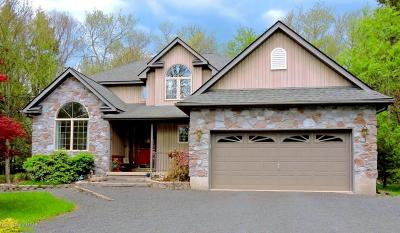 Pocono Pines Single Family Home For Sale: 6131 Lakeview Drive