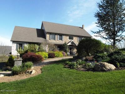 Palmerton Single Family Home For Sale: 250 Carpenter Ln