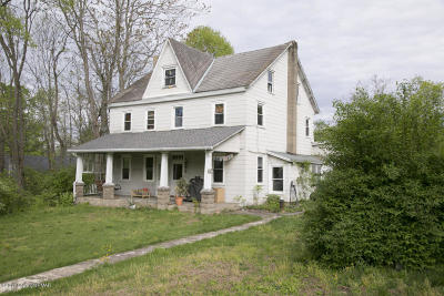 Stroudsburg Single Family Home For Sale: 115 Breezy View Ln