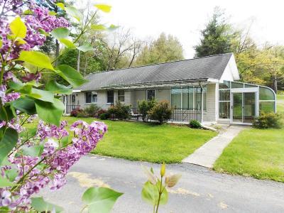 Jim Thorpe Single Family Home For Sale: 926 Laurel St