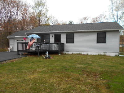 Towamensing Trails Single Family Home For Sale: 271 Petrarch Trail