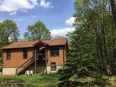 Jim Thorpe Single Family Home For Sale: 51 Mountainview Dr