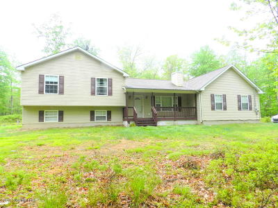 Cresco Single Family Home For Sale: 452 Birch Dr