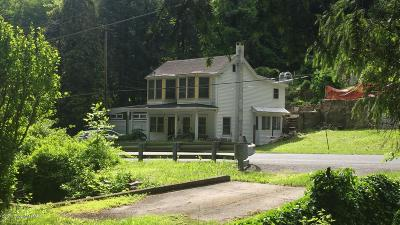 Jim Thorpe Single Family Home For Sale: 407 W Broadway