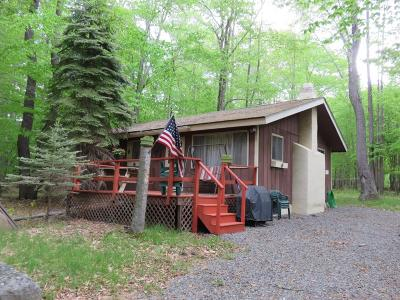 Gouldsboro Single Family Home For Sale: 409 Packanack Drive