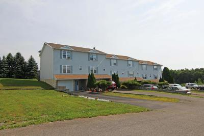 Kunkletown Multi Family Home For Sale: 151 Victoria Arms Cir