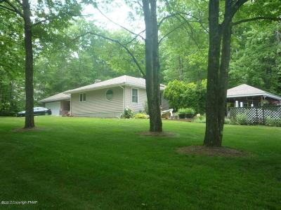 Kunkletown Single Family Home For Sale: 1332 Par Dr