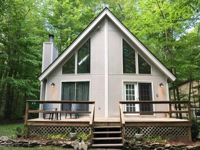 Pocono Lake Single Family Home For Sale: 20 Minisink Dr