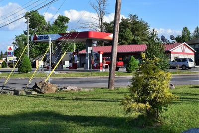 Blakeslee Commercial For Sale: 5663 Route 115 Rte
