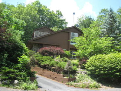 Country Club Of The Poconos Single Family Home For Sale: 210 Fringe Dr