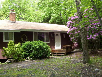 Pocono Summit Single Family Home For Sale: 1205 Thunder Dr