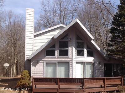 Towamensing Trails Single Family Home For Sale: 59 Caedman Drive