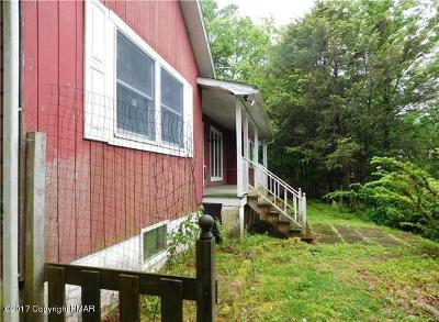 Palmerton Single Family Home For Sale: 236 Sunset Way