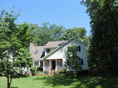 Tannersville Single Family Home For Sale: 347 Jennifer Ln