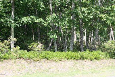 Tannersville Residential Lots & Land For Sale: Lot #32 Camelback Dr