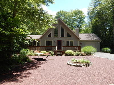 Pocono Pines PA Single Family Home For Sale: $295,000