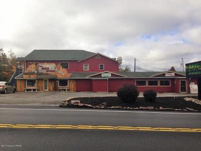 Blakeslee Commercial For Sale: 3827 Route 115 Rte