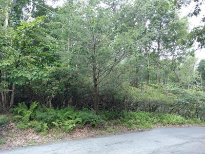 Cresco Residential Lots & Land For Sale: Lot C Hickory St