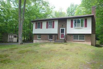 Pocono Summit Single Family Home For Sale: 5136 Ash Dr