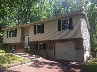 Stroudsburg Single Family Home For Sale: 116 Michael Ln
