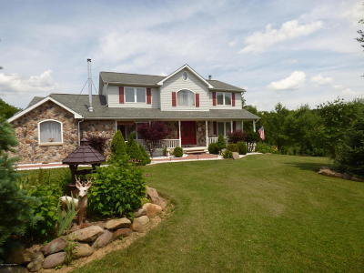 Kunkletown Single Family Home For Sale: 75 Halina Way