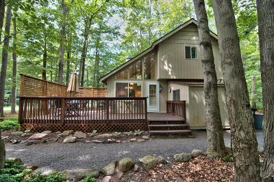 Pocono Pines PA Single Family Home For Sale: $205,000