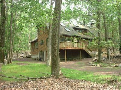 Lake Harmony Single Family Home For Sale: 29 Split Rock Rd
