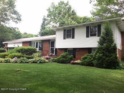 Mount Pocono Single Family Home For Sale: 221 Winona Rd