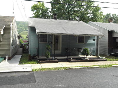 Palmerton Single Family Home For Sale: 780 Mauch Chunk Rd